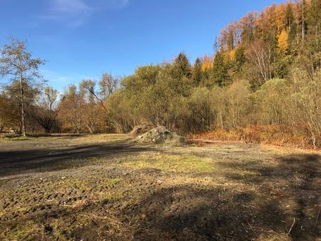 Obraz przedstawiający teren z drzewami (kliknięcie spowoduje powiększenie obrazu)