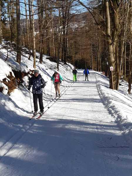Dzieci zjeżdżające z górki na nartach biegowych (kliknięcie spowoduje powiększenie obrazu)